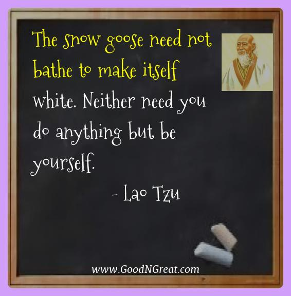Lao Tzu Best Quotes  - The snow goose need not bathe to make itself white. Neither