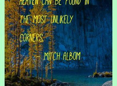 mitch_albom_best_quotes_348.jpg