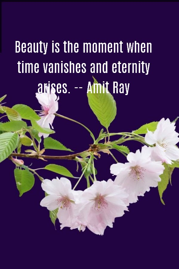 Beauty is the moment when time vanishes and eternity arises. -- Amit Ray