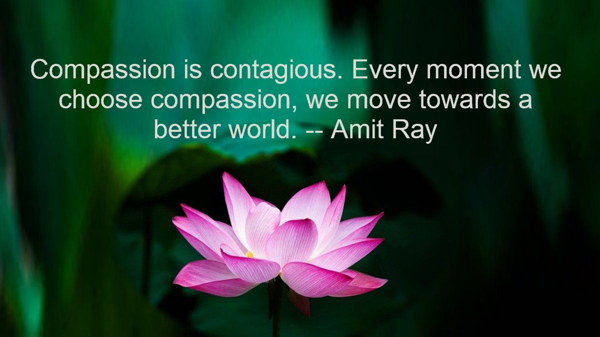 Compassion is contagious. Every moment we choose compassion, we move towards a better world. -- Amit Ray