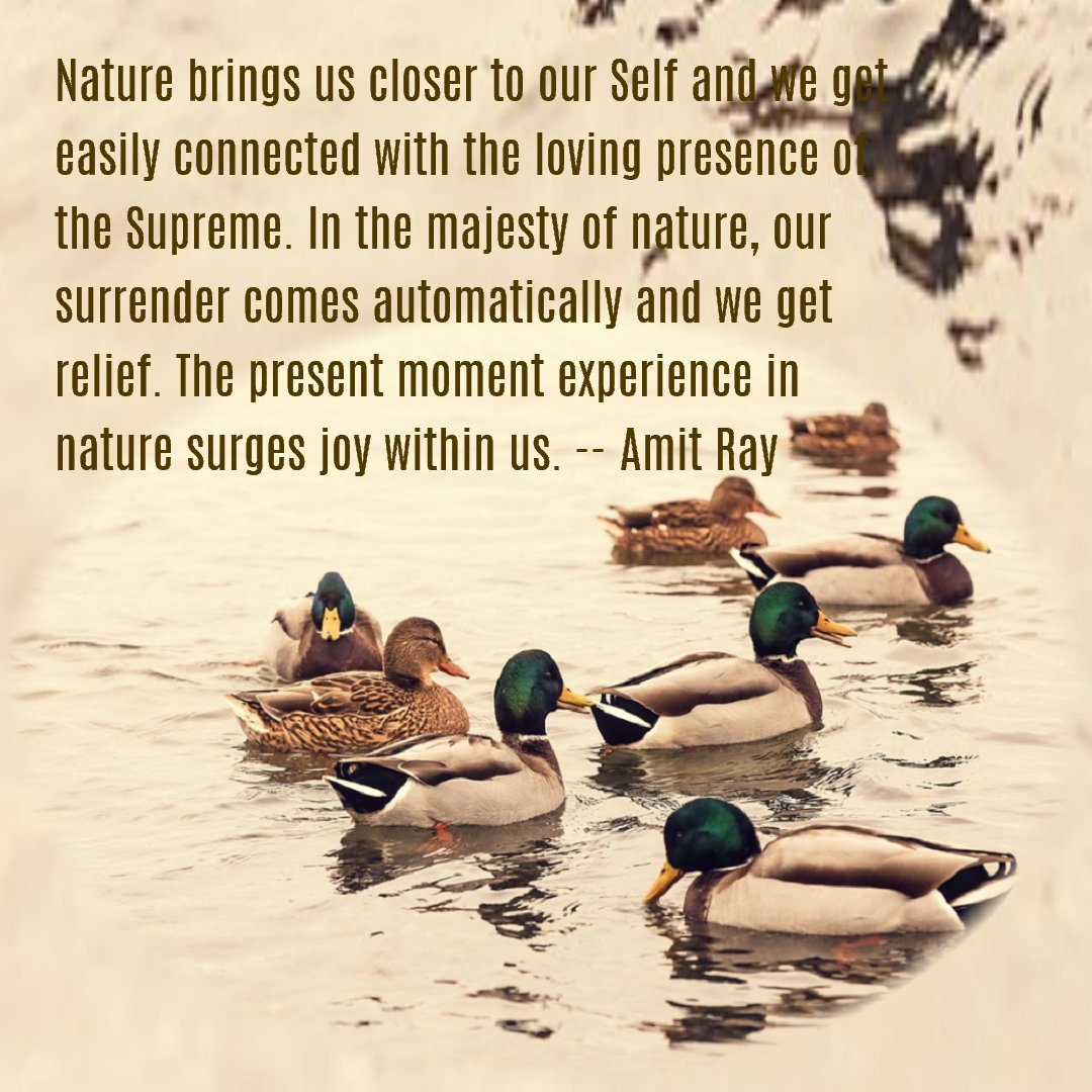 Nature brings us closer to our Self and we get easily connected with the loving presence of the Supreme. -- Amit Ray
