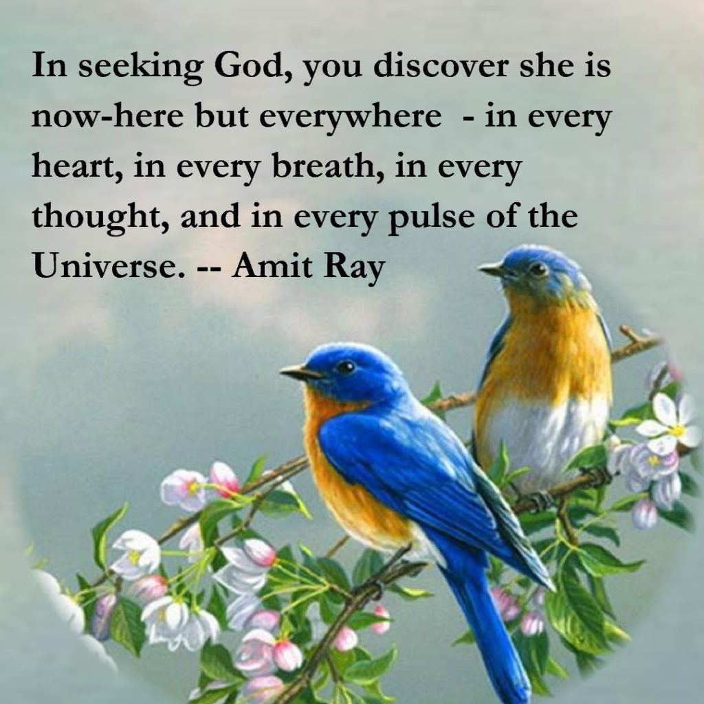 Seeking God Everywhere Amit Ray Quotes