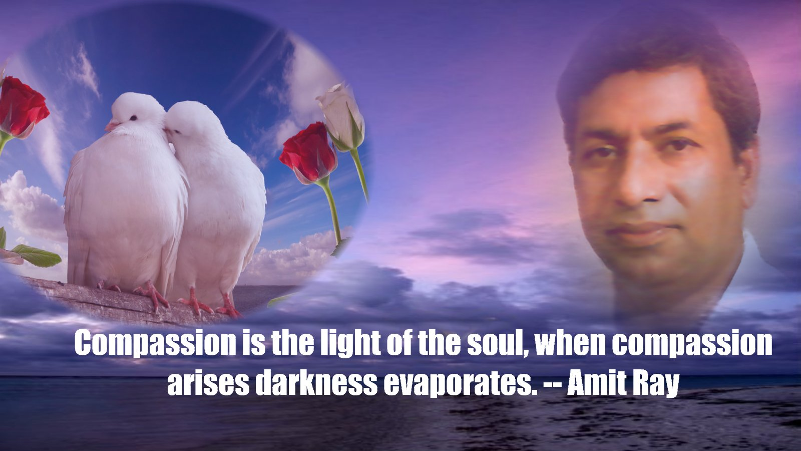 Compassion the Light of the Soul | Amit Ray Teachings