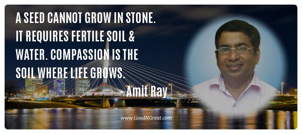 A seed cannot grow in stone. It requires fertile soil & water. Compassion is the soil where life grows. -- Amit Ray