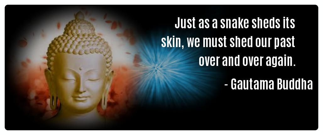 Just as a snake sheds its skin we Gautama Buddha Mindfulness Quotes